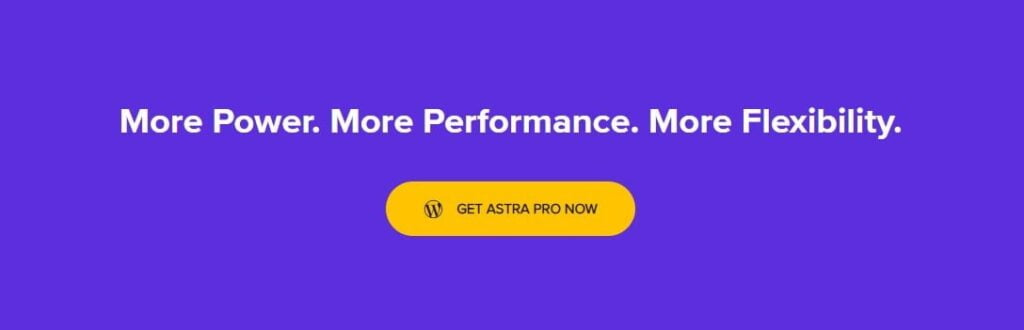 Astra Buy Now Banner